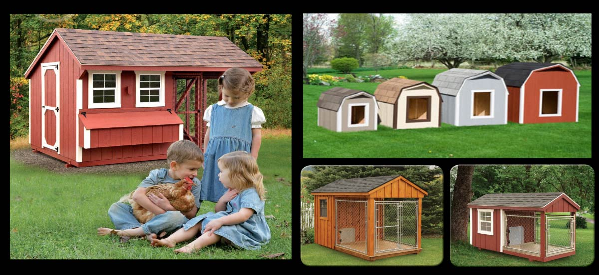 Dog Kennel Chicken Coop Pet Houses Baltimore Md